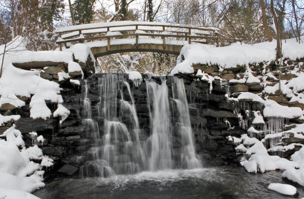 The falls on Vernon Run near the Rose Valley Swimming Pool Photo by Anne Marie Palita Smith.