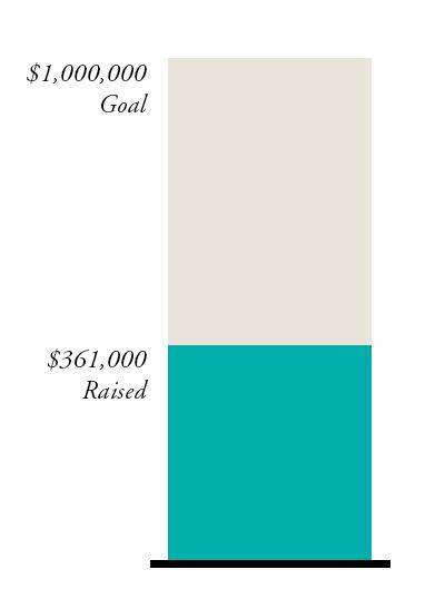 Fundraising-Goal